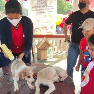 Pet adoption camp - 14 Feb (11)