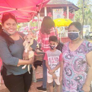 Pet adoption camp - 14 Feb (13)