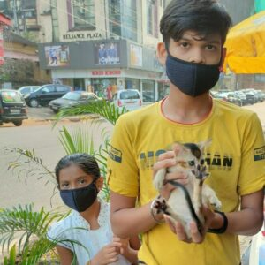 Care4Animals Goa - Pet Adoption Camp Goa - 28 Feb 21